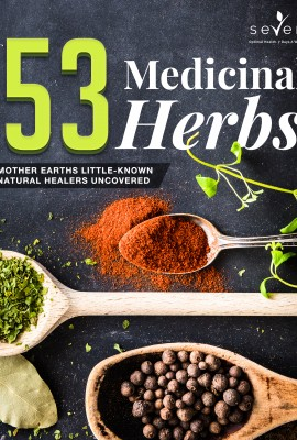 53 Medicinal Herbs – Mother Earths Little-Known Natural Healers Uncovered